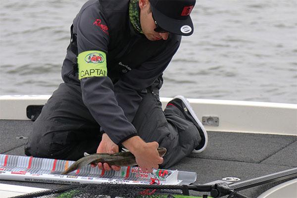 600x400-measuring-fish