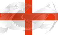 Flag England-Flag